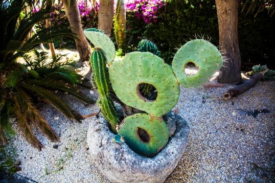 Ravino Gardens, Ischia