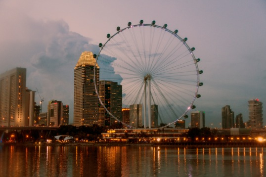 Singapore Flyer - view from Gardens on the Bay